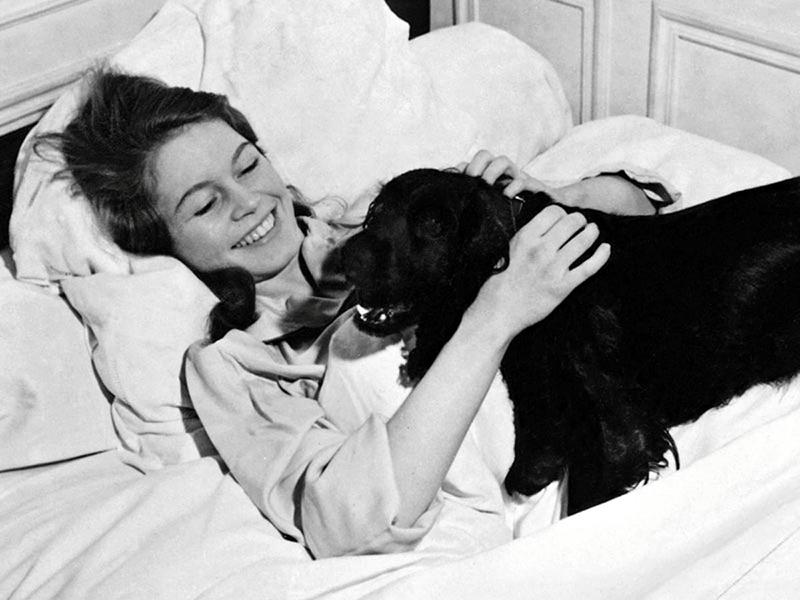 Image result for Brigitte Bardot rare