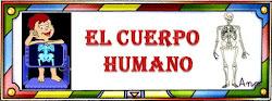 PROYECTO : Cuerpo humano