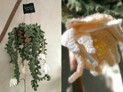 Miss Chaela Boo: Hooked on Plants - crochet Epiphillum anguliger (Fishbone Cactus)