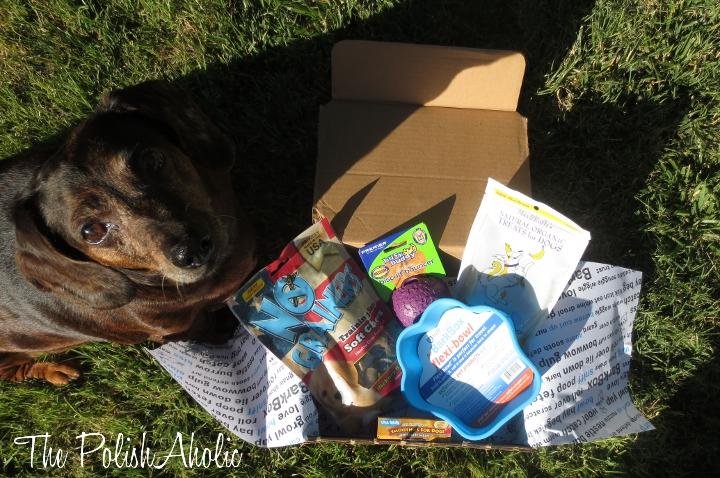 Dog Box Monthly Uk
