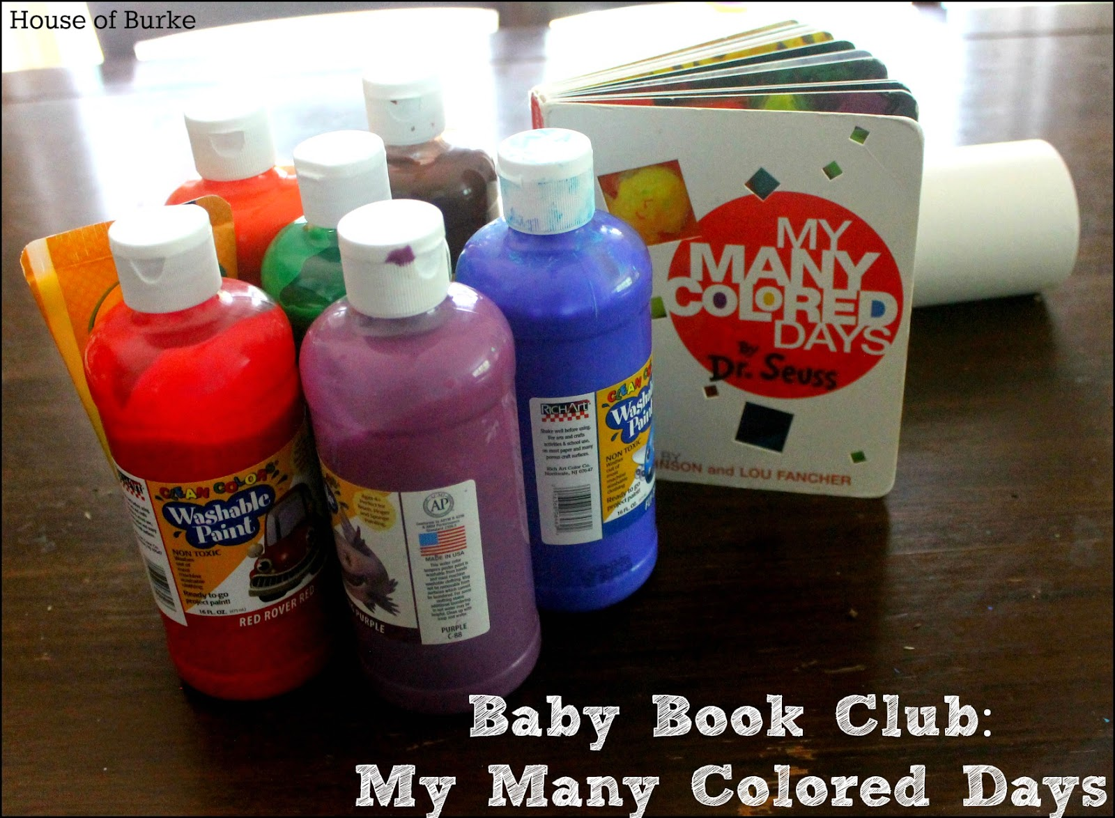House of Burke: Baby Book Club: My Many Colored Days