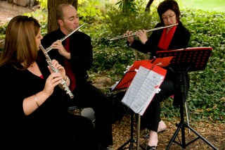 A garden wedding with the Kshema Trio