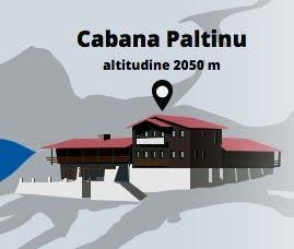 Cabana Paltinul