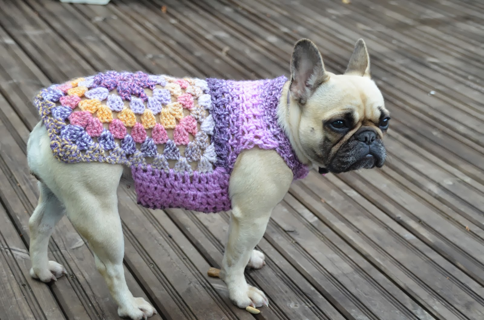 Small Dog Coat Dog sweaters to KNIT & Crochet.. Patterns ...