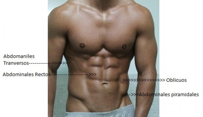 Consultar dietas para adelgazar rapido 10 kilos gratis