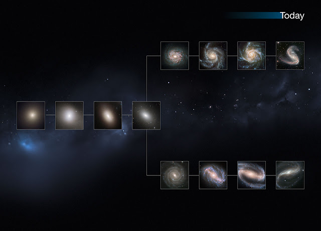 "This image shows a ""slice"" of the Universe as it is today. The shape is that of the Hubble tuning fork diagram, which describes and separates galaxies according to their morphology into spiral (S), elliptical (E), and lenticular (S0) galaxies. On the left of this diagram are the ellipticals, with lenticulars in the middle, and the spirals branching out on the right side. The spirals on the bottom branch have bars cutting through their centres. Our local Universe displays big, fully formed and intricate galaxy shapes.  This image is illustrative; the Hubble images used were selected based on their appearance. The individual distances to these galaxies are only approximate.  Credit:  NASA, ESA, M. Kornmesser"