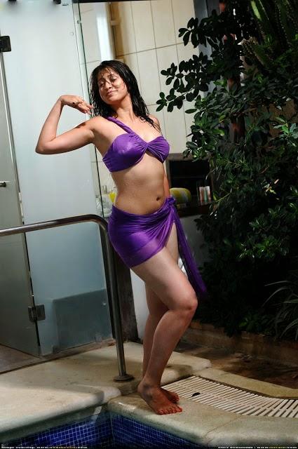 lakshmi rai boobs bikini