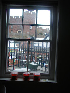 Shrewsbury castle window box herb garden