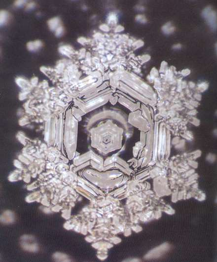 Healing with water emoto essay