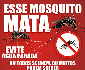 Combata a Dengue em Itapirapuã