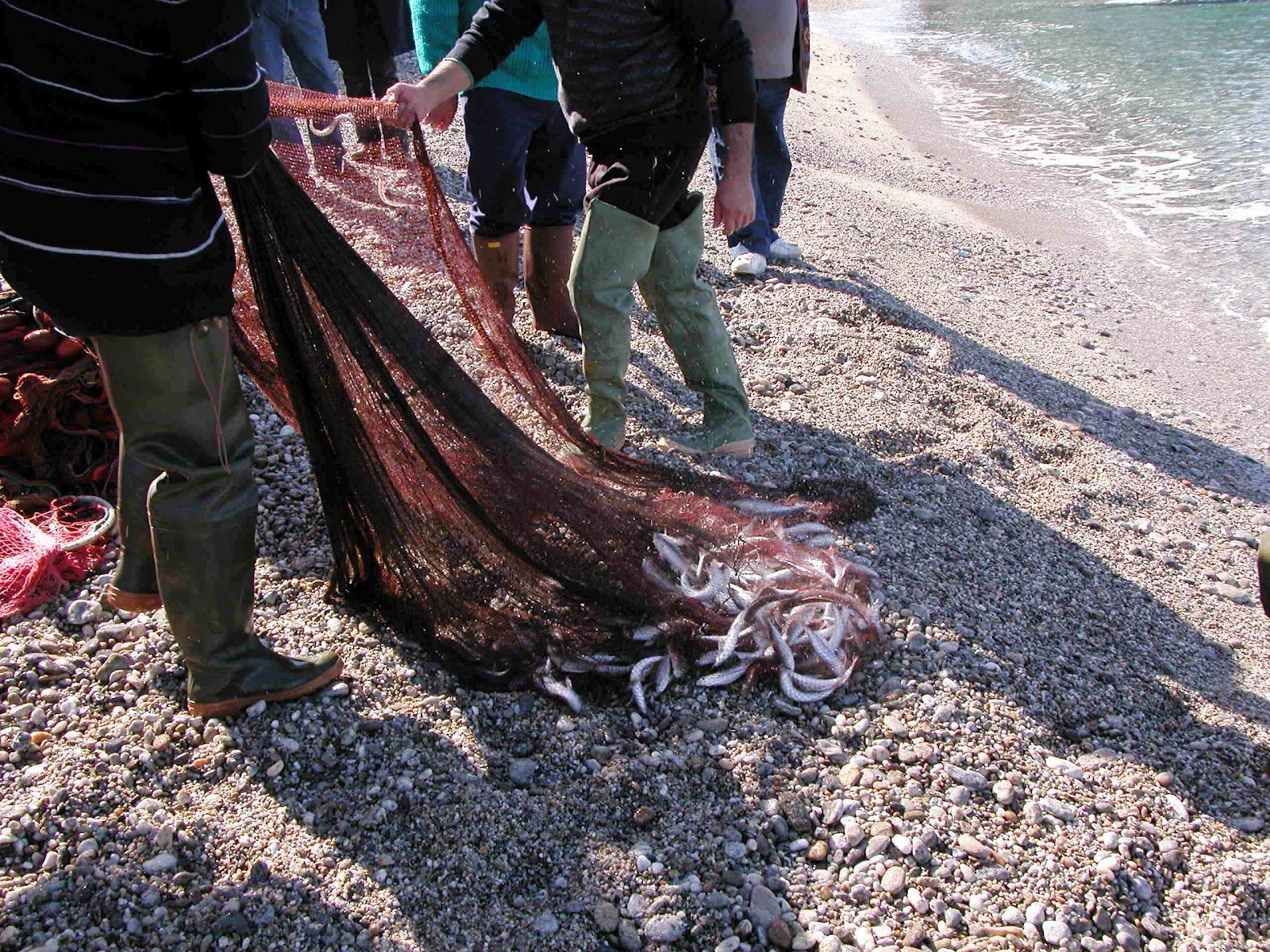 Non solo palmi alla tonnara di palmi la sciabica da for Barchetta da pesca