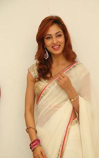 Actress Vidisha Srivastava Latest Pictures in Saree at Harinath Wedding Reception  5.jpg