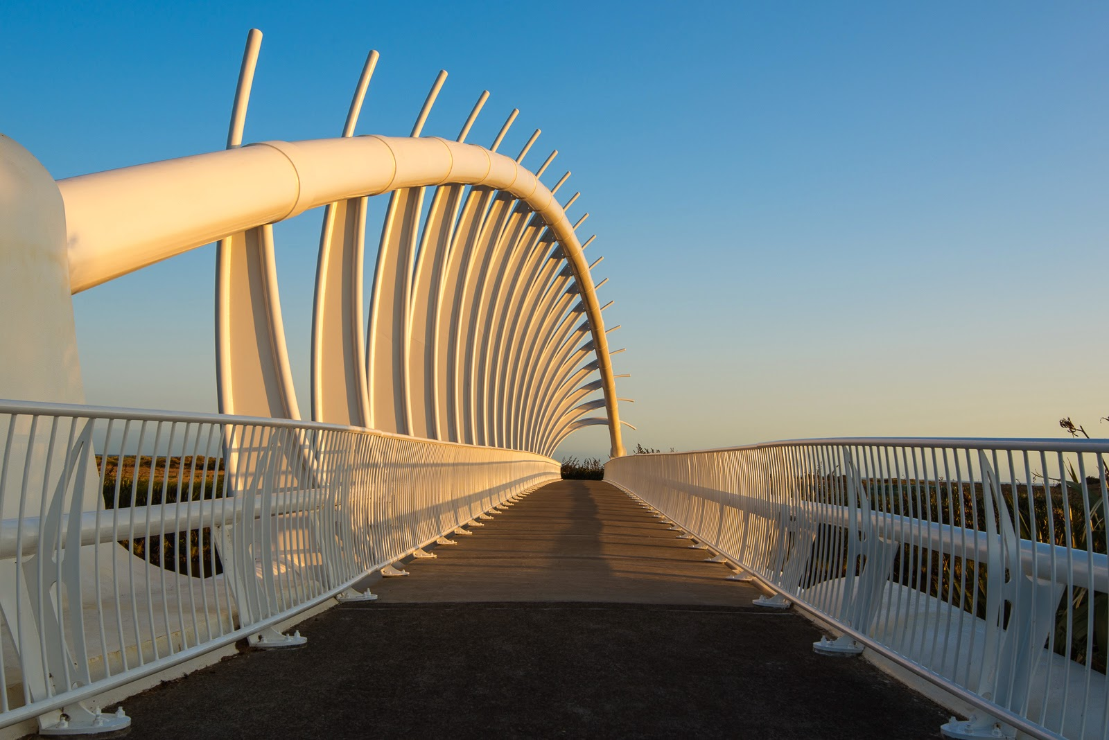 te rewa rewa bridge sunrise photo