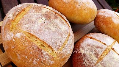 Pan casero,Harina de Semola, trigo duro