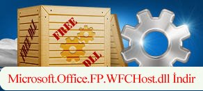 Microsoft.Office.FP.WFCHost.dll Hatası çözümü.