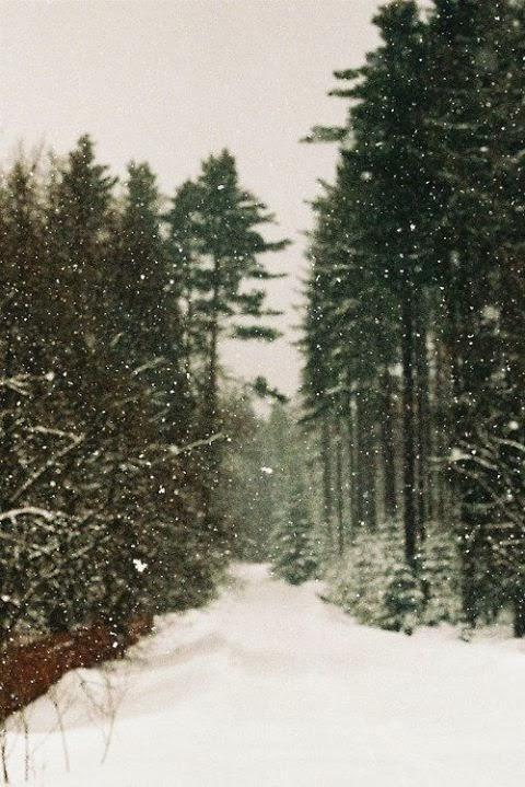 Imágenes de paisajes hermosos de invierno
