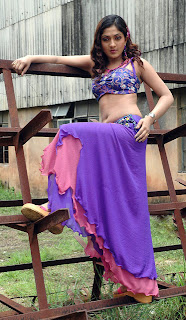 Sheela Hot Navel Show Gallery
