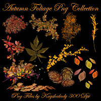 Autumn Foliage PNG Tube Collection