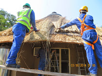 Shona Tribe craftsmen repairing thatched roof on Oliphant Camp guest houses, Kruger National Park