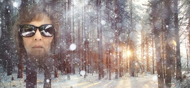 WINTER IN TREES