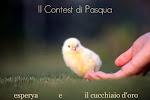 Il contest di Pasqua