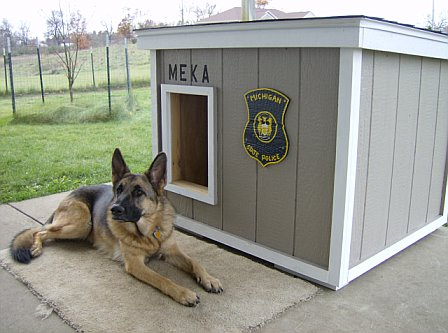 Simple Ideas sipmle ideas for your dog housevery