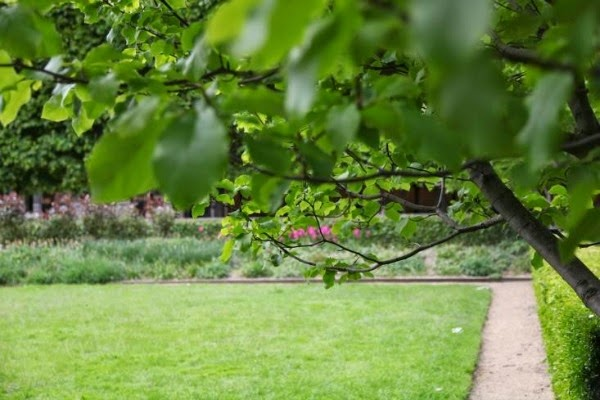 10 ideas para conseguir un jard n con aire franc s guia for Jardin geometrico