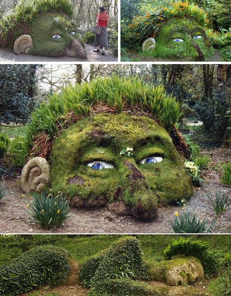 shine on braxton - Alice In Wonderland Garden