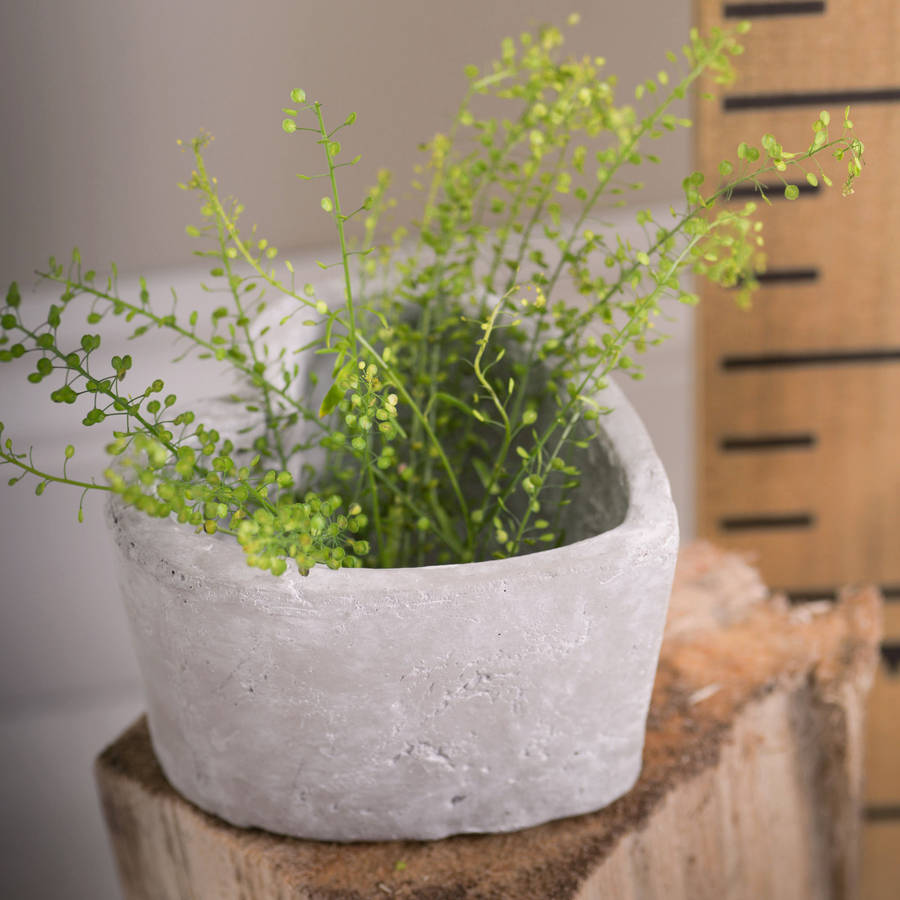 Concrete Interior Accessories Planter