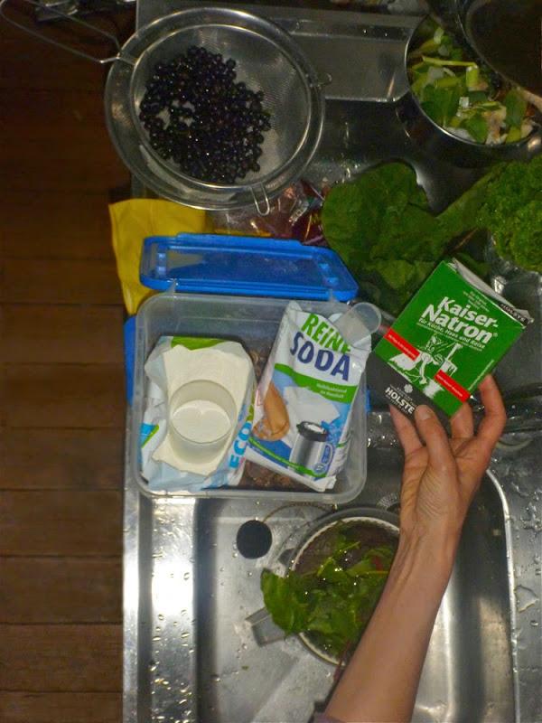 Draufsicht auf eine Küchenspüle: Salat, Kräuter, schwarze Johannisbeeren und Haushaltschemie