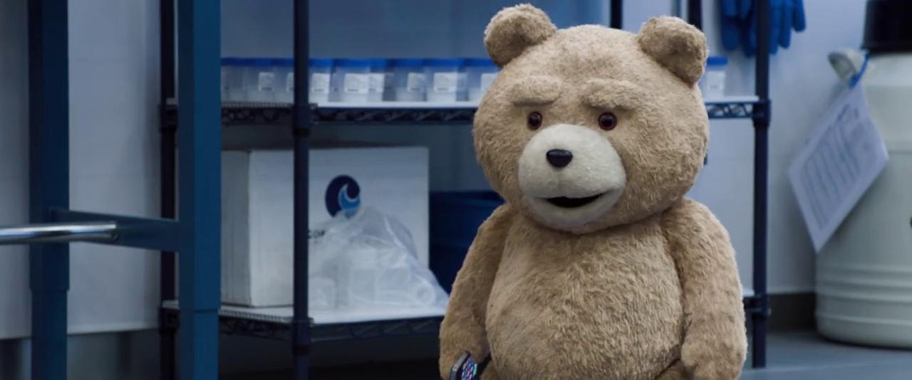 Screen Shot Of Ted 2 2015 In Hindi English Dual Audio Bluray 720P