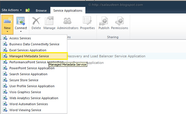 sharepoint 2010 create anaged metadata service application