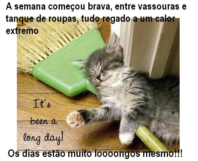 Famosos Toca-dos-Gatos: Passamos para dar um BOA NOITE!! PN56