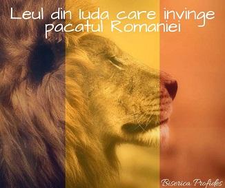 Tony Berbece 🔴 Leul din Iuda pentru România...