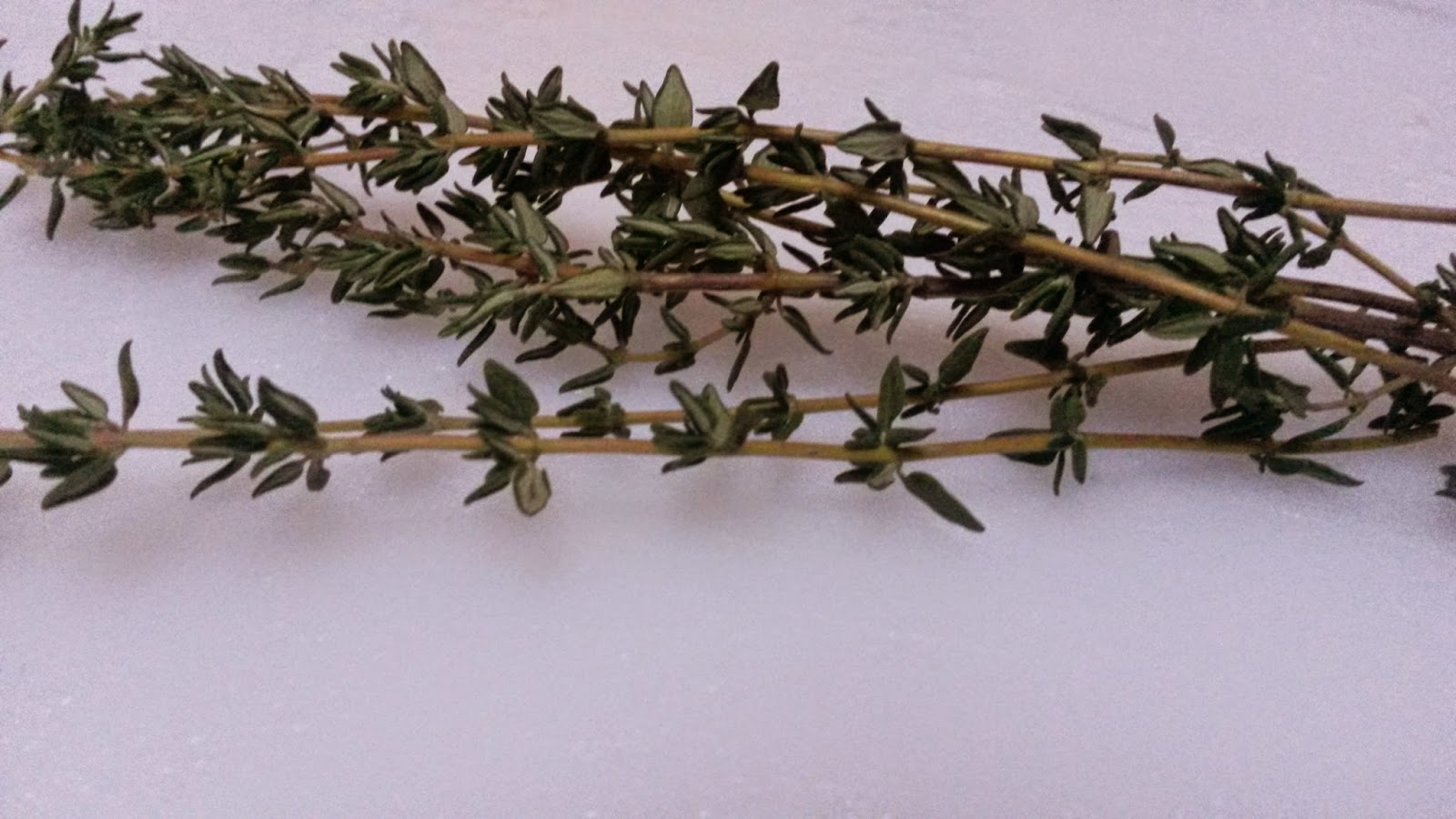 The Delightful Thyme