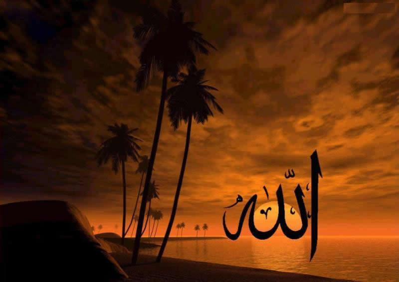 Allah's Name Wallpapers