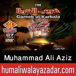 http://www.humaliwalayazadar.com/2015/10/ali-aziz-nohay-2016.html