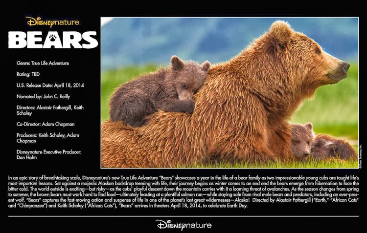 April 18, 2014 – Bears