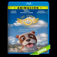 Stubby, un héroe muy especial (2018) BRRip 1080p Audio Dual Latino-Ingles