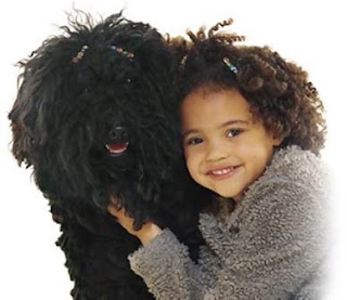 Choosing Best Dogs For Kids Information