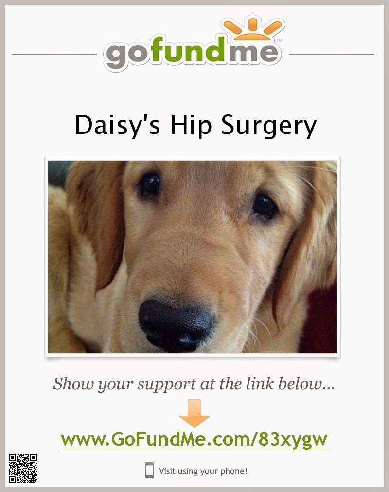Help Daisy Mae
