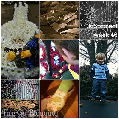 Five Go Blogging 365project week 46