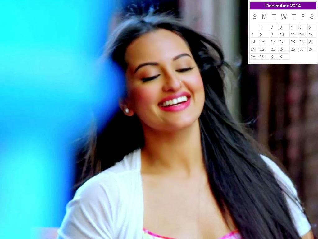 Sonakshi Sinha Calendar 2014: Sonakshi Sinha New Year 2014 Calendar ...