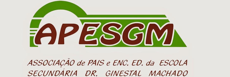 AP Escola Dr. Ginestal Machado