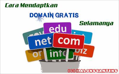 Cara Mendapatkan Domain Gratis Selamanya dan Cara Settingnya