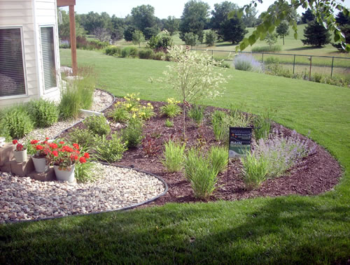 Rain Garden Plants Designed To Use The Resources Of