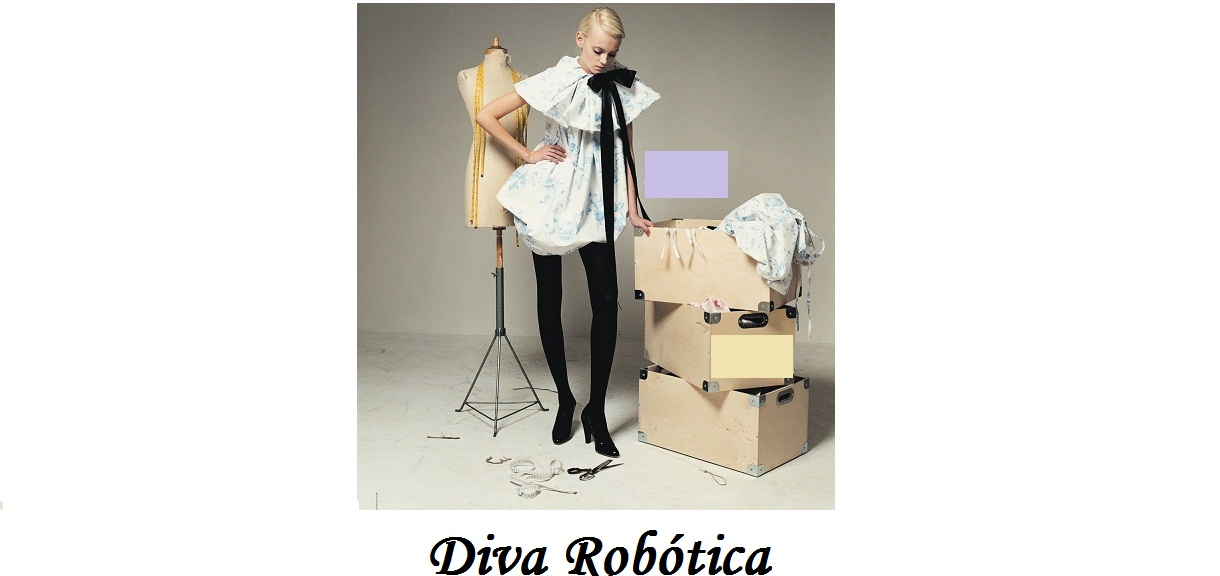 Diva Robótica