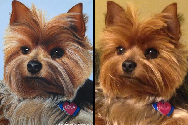 lola, dog, yorkie, yorkshire terrier, pet portrait, portrait, dog portrait, puppy, pet art, oil painting, realism, animal art, yorkie painting, custom pet painting, custom pet art, toronto portrait artist
