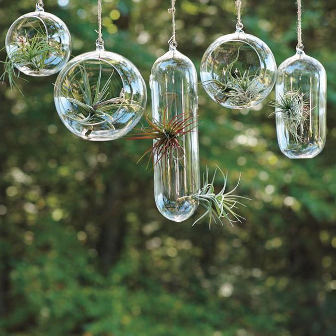 Amazing hanging garden in glass bubbles modern house - Composiciones de cactus ...