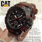 Cat Watch L02